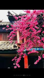 濮阳市公园里小区,出门就是德胜公园