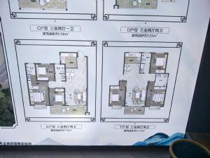 濮�|又一新�P,�R�S桃李春�L